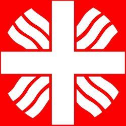 Caritas-Logo bijgesneden