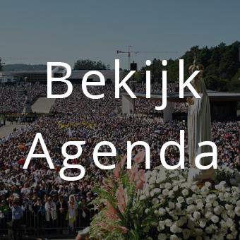 bekijk_agenda