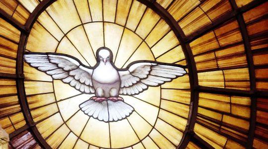 Pinksterbrief bisschoppen: 'Mogen wij u een vraag stellen?'