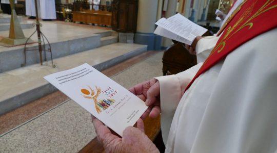 'Synodaal proces gaat om vinden van gezamenlijke weg'